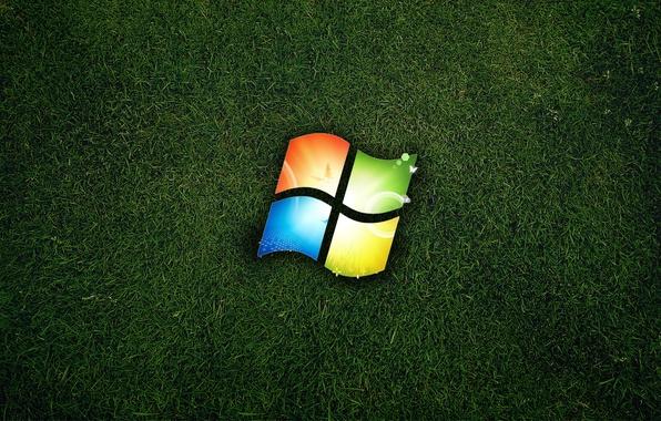 Picture grass, logo, windows