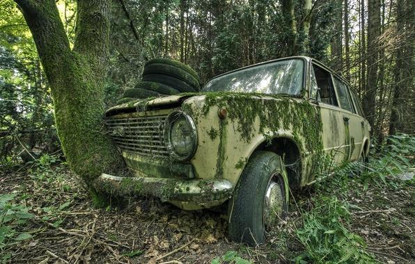 Picture machine, moss, scrap, Lada