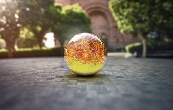 Picture macro, glass globe, render, dragon ball