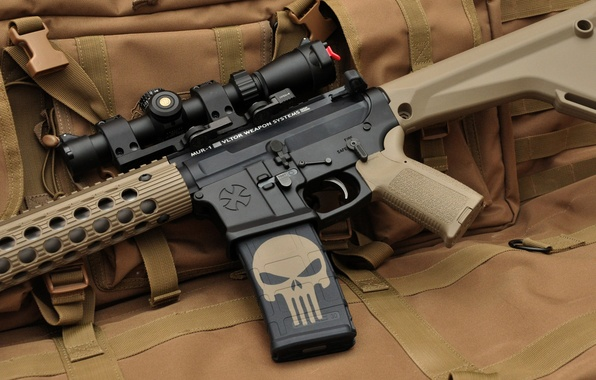 Picture weapons, skull, machine, optics, the Punisher, assault rifle, assault rifle, punisher