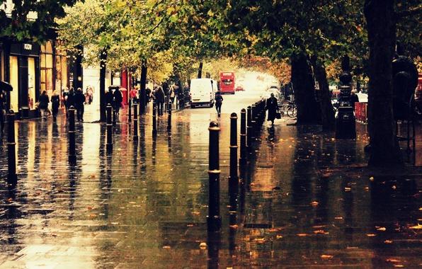Picture autumn, the city, rain, street