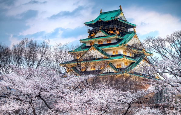 Picture the sky, the city, Japan, color, spring, Sakura, temple