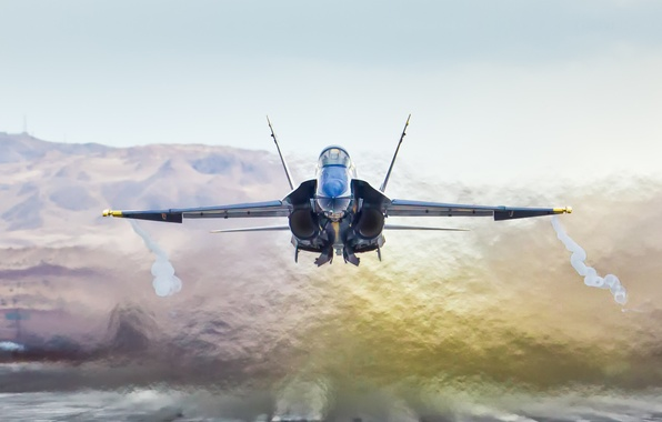 Picture California, Blue Angels, McDonnel Douglas F/A-18A Hornet