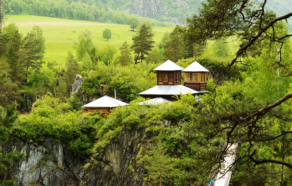 Picture greens, trees, mountains, branches, bridge, rocks, field, houses, Russia, forest, the Altai mountains, the island …