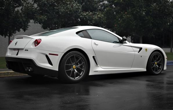 Picture white, trees, Ferrari, white, Ferrari, 599, tree, gto, back