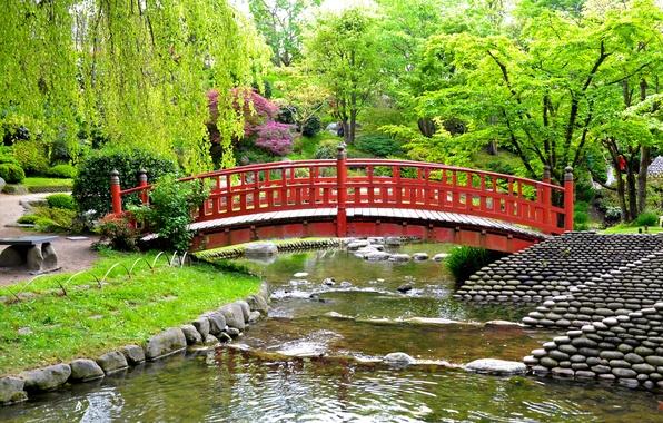 Picture greens, grass, trees, bridge, pond, stones, France, garden, the bushes, Albert-Kahn Japanese gardens