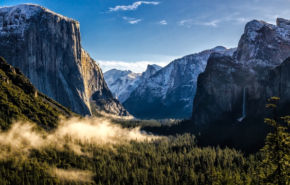Picture forest, mountains, USA, USA, Yosemite national Park, Yosemite National Park, State California, California