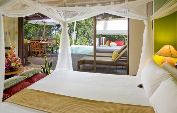Picture flowers, design, comfort, photo, room, Wallpaper, interior, bright