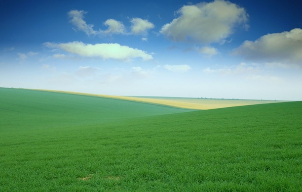 Picture the sky, grass, field, meadows, spaces