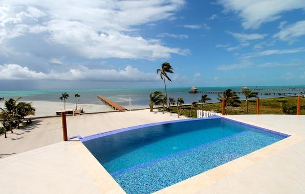 Wallpaper Palm Trees, The Ocean, Coast, Pool, Resort