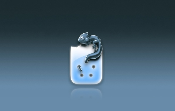 Picture Minimalism, lizard, tail