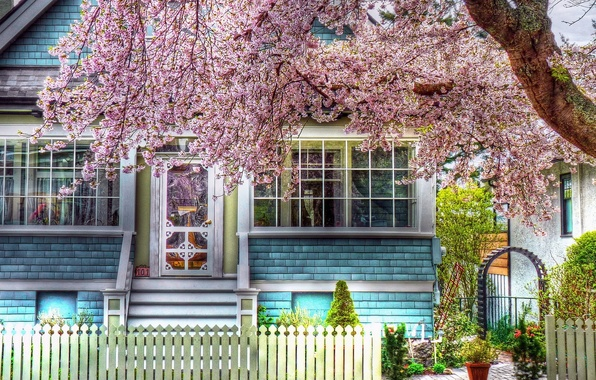 Picture nature, house, photo, tree, color, HDR, spring, house