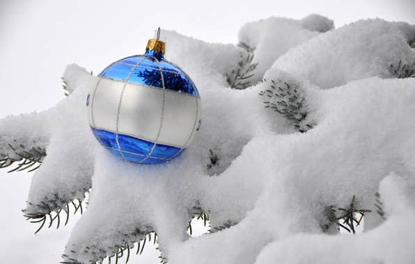 Picture winter, white, snow, branches, blue, nature, toy, ball, spruce, ball, New Year, Christmas, tree, Christmas, …