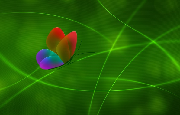 Picture line, green, color, Butterfly
