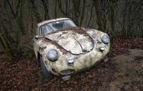Picture machine, forest, scrap
