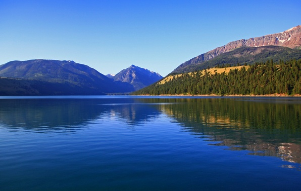 Picture forest, nature, Oregon, mountain lake, Wallowa Lake and Wallowa mountains