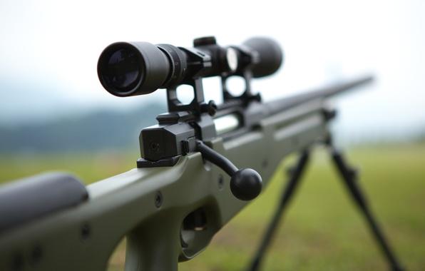 Picture weapons, optics, rifle, sniper, awp, awm, Arctic Warfare Magnum