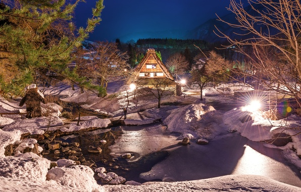 Picture winter, snow, night, lights, river, home, village