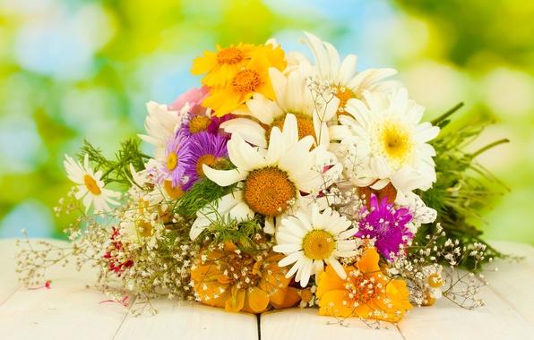 Picture chamomile, bouquet, gerbera