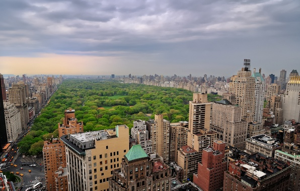 Picture trees, clouds, the city, overcast, building, home, Manhattan, New York, Manhattan, New York City, new …