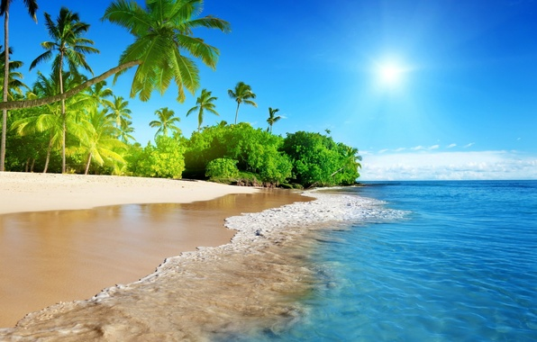 Picture the sun, tropics, palm trees, the ocean, wave
