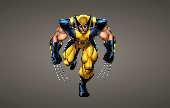 Picture Wolverine, X-Men, wolverine, comic, Marvel Comics, X-Men