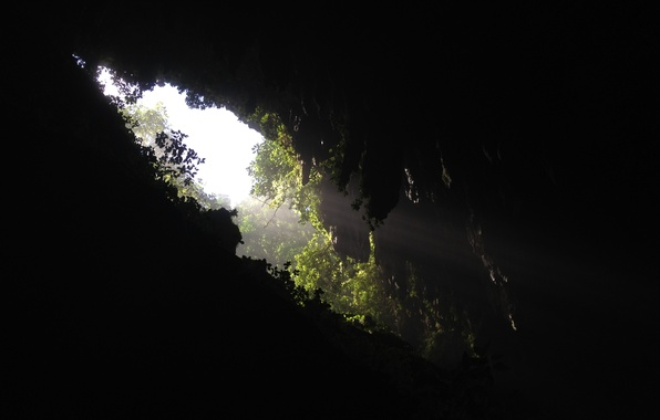 Picture greens, dark, hole, gorge, cave, opening