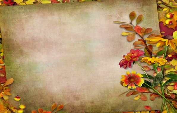 Picture autumn, leaves, flowers, berries, vintage, background, autumn, leaves