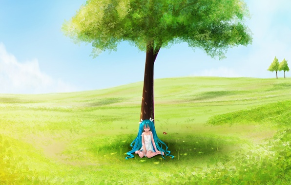 Picture field, summer, tree, girl