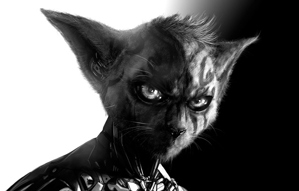 Picture Cat, hairstyle, costume, tattoo, evolution, gadget, new tribe
