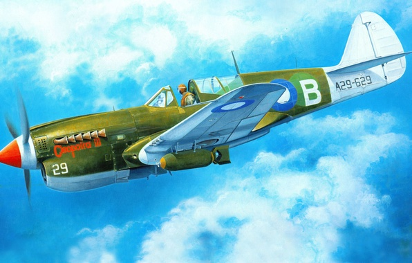 Picture the plane, fighter, art, American, Curtiss, Tomahawk, P-40, Warhawk, WW2., Kittyhawk