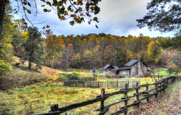 Picture autumn, forest, grass, leaves, trees, branches, house, the fence, treatment, the barn, USA, hut, fence, …