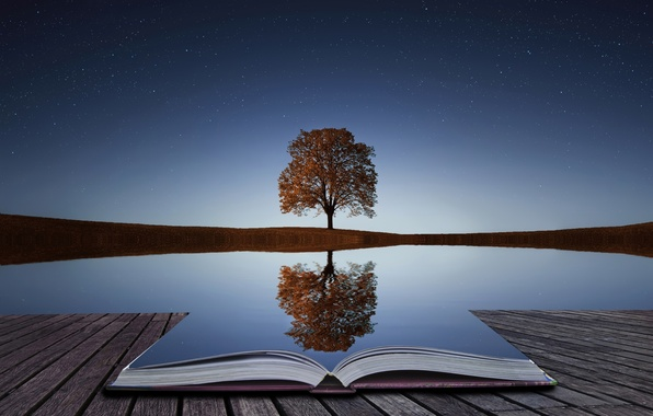 Picture water, reflection, tree, book