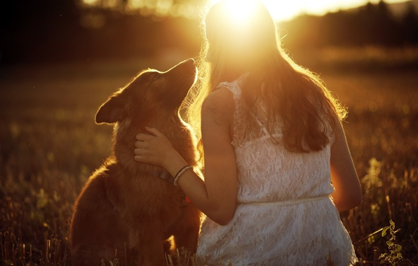 Picture girl, light, mood, dog