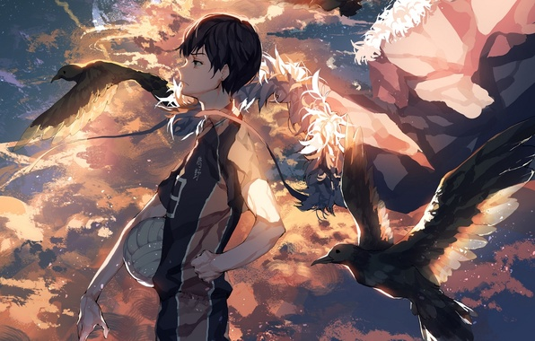 Picture the sky, sunset, birds, the ball, anime, art, guy, volleyball, ser323, Haikyuu!!, tobio kageyama