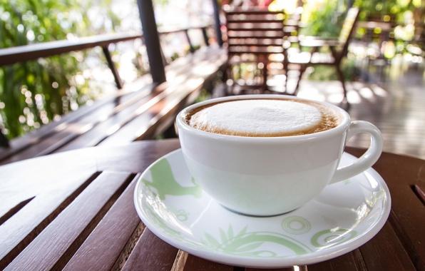 Picture coffee, cream, Cup, foam, cup, coffee, cream
