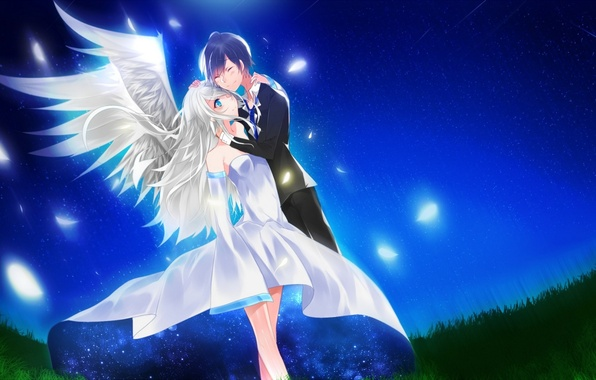 Picture the sky, girl, stars, night, wings, anime, feathers, art, guy, aoiken