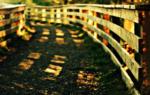 Picture greens, grass, the sun, macro, widescreen, Wallpaper, vegetation, the fence, gate, the fence, track, wallpaper, …