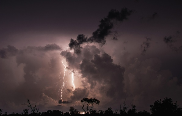 Picture the storm, clouds, trees, night, clouds, lightning, silhouette