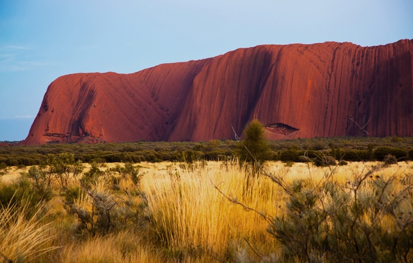 Picture nature, desert, morning, Australia, Uluru, Ayers Rock, Uluru