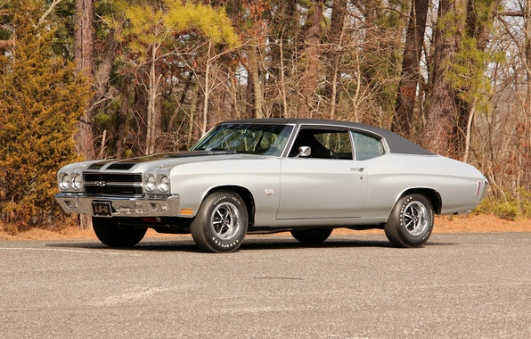 Picture coupe, Chevrolet, Chevrolet, Coupe, 1970, Chevelle, Hardtop, LS6, Chevelle, SS 454