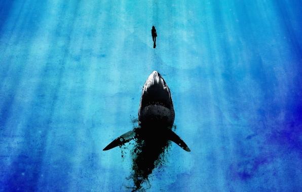 Picture girl, mega shark, rays of light