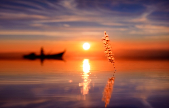 Picture water, the sun, reflection, boat, silhouette, a blade of grass