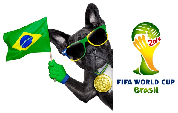 Picture logo, dog, football, flag, funny, cool, World Cup, Brasil, FIFA, 2014
