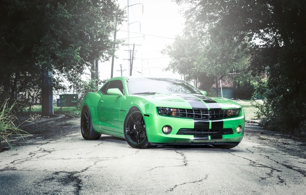 Picture Auto, Grass, Trees, Chevrolet, Tuning, Machine, Camaro