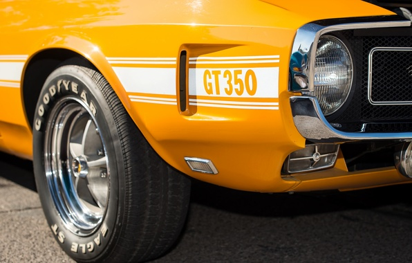 Picture Ford, Shelby, 1969, muscle car, GT350