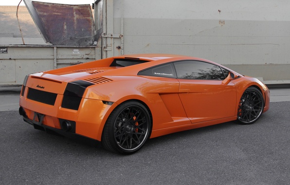 Picture orange, black, the fence, gallardo, lamborghini, drives, rear view, orange, Lamborghini, Gallardo, lp560-4