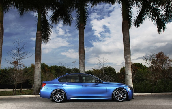Picture blue, tuning, BMW, BMW, profile, blue, tuning, F30, The 3 series