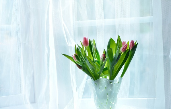 Picture flowers, house, room, bouquet, window, tulips, vase