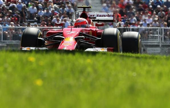 Picture grass, race, formula 1, ferrari, tribune, Motorsport, Kimi Raikkonen